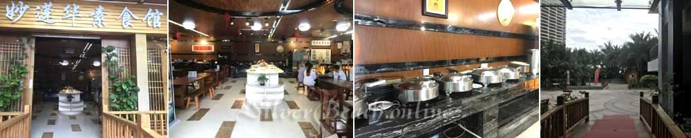 Вегатарианский ресторан Silver Beach